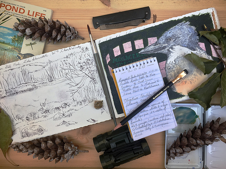 Nature Journaling Prompts [FREE DOWNLOADABLE PROMPTS LIST]