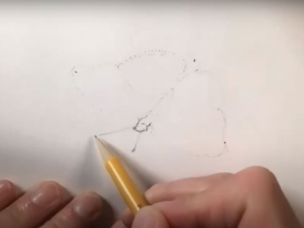 how to draw a butterfly - step 2
