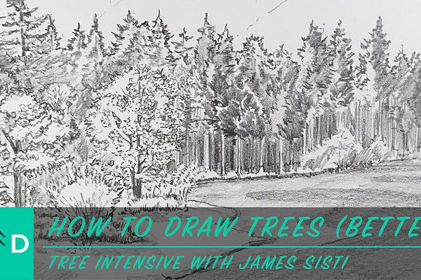 how to draw trees better